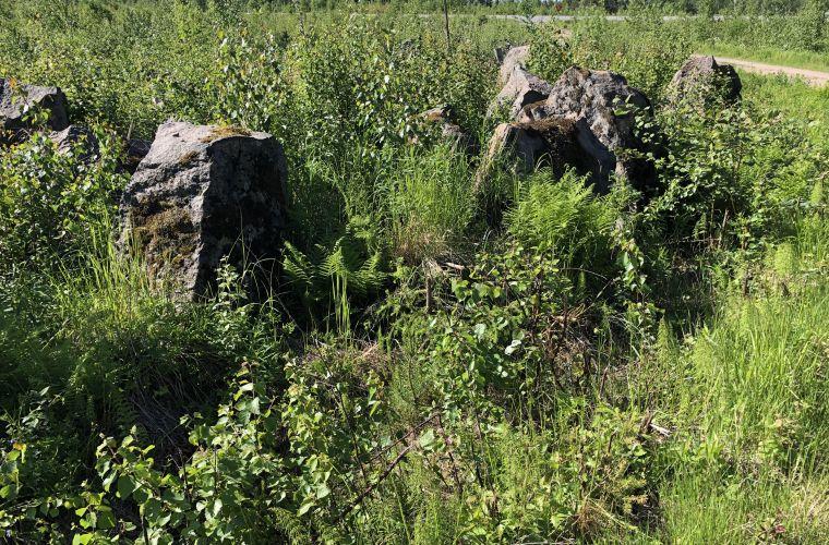 Salpalinjan panssarieste Puumalan tien varrella Syyspohjassa.