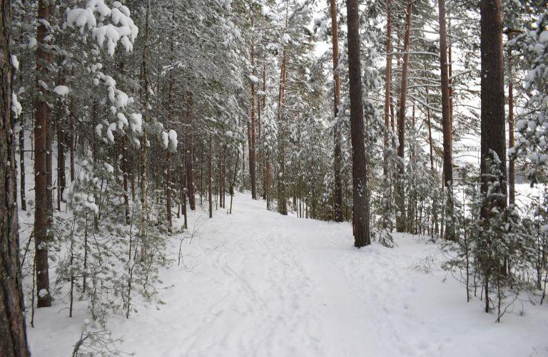 Trail, Lammassaari, Imatra