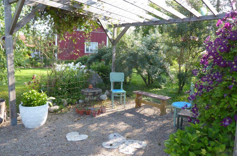 puutarha, yrtit, tuoksut, rentoutuminen, kasvit, yrttitee, clematis, tyrni,